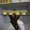 champagne-01-gi